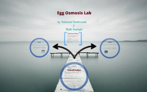 Egg Osmosis Lab by Nate Dombrowski on Prezi Next