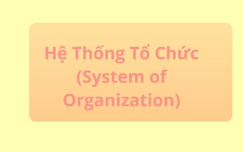 Organization Of Tntt By Samantha Nguyen
