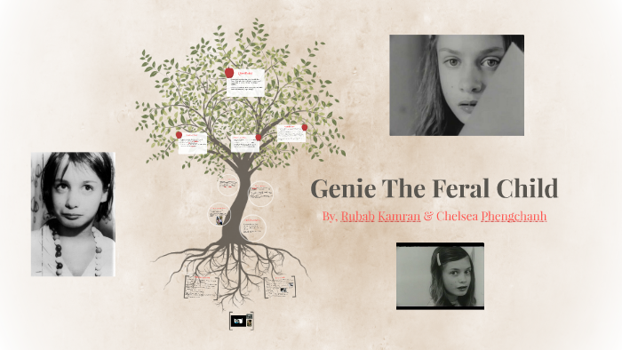 Genie The Feral Child by Chelsea Phengchanh on Prezi