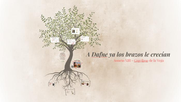 A Dafne Ya Los Brazos Le Crecían By Judit Postigo On Prezi