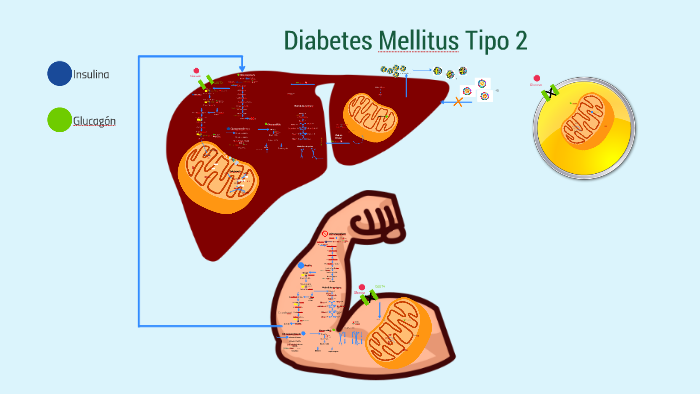 diabetes mellitus tipo dos
