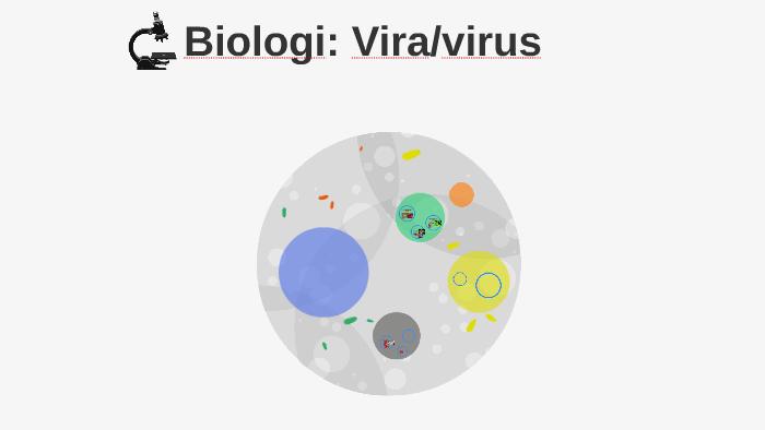 Biologi: Vira/virus by Gordon Verity on Prezi
