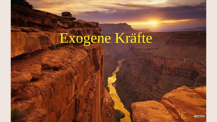 Exogene kräfte
