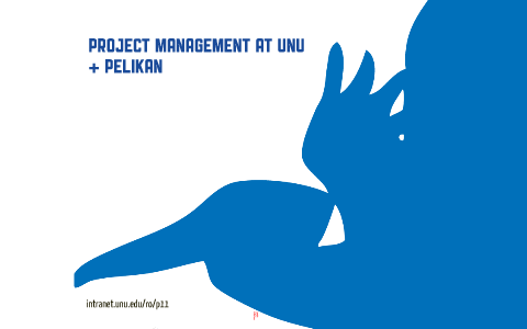 UNU Project Management and the Pelikan - SV by Nik Pavesic
