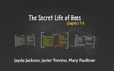 chapter 11 secret life of bees