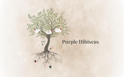 Purple Hibiscus By Alexia Arias On Prezi
