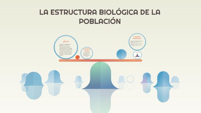 La Estructura Biológica De La Población By ángela Ortiz On Prezi