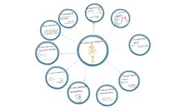 az emberi test felépítése a mechanika szempontjából)
