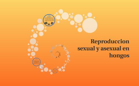 Reproduccion asexual de los hongos alucinogenos