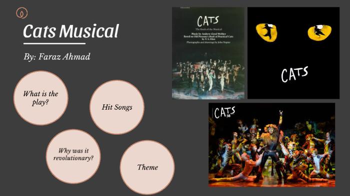 Cats Musical Broadway By Giti Mohmand