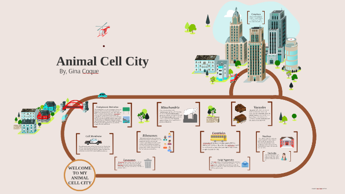 animal cell city by gina coque on prezi. Black Bedroom Furniture Sets. Home Design Ideas