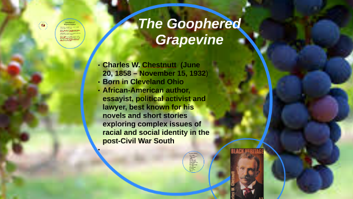 the goophered grapevine