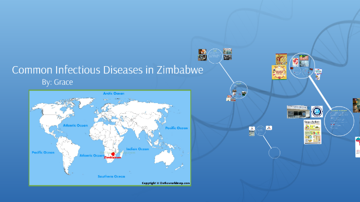 Common Infectious Diseases in Zimbabwe by Grace Acquilano on Prezi