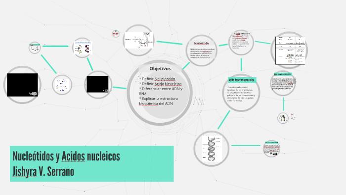 Nucleótidos Y Acidos Nucleicos By Jishyra Serrano On Prezi