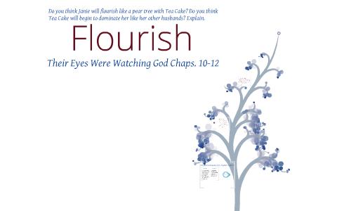 their eyes were watching god socratic seminar questions