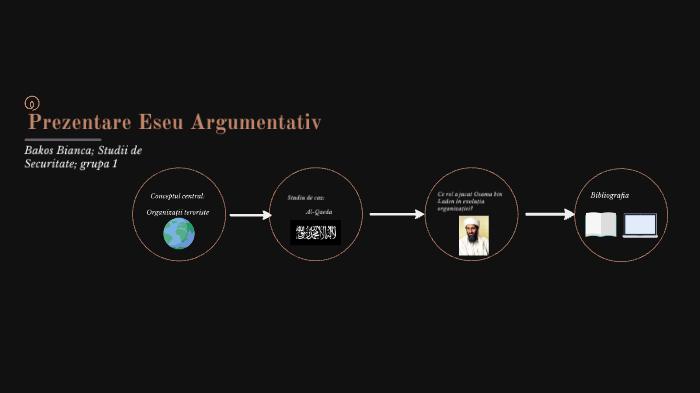 Drepturile omului eseu argumentativ