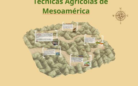 Técnicas Agricolas De Mesoamerica By Diane Alvarez On Prezi