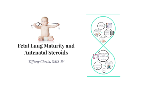 Antenatal steroids for lung maturity florida steroid laws