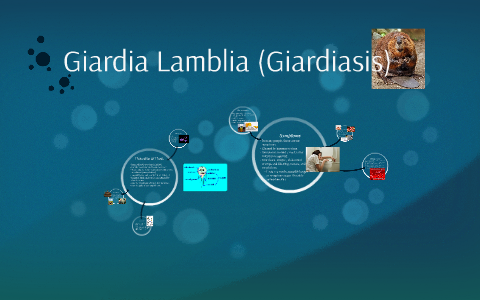 Giardia in tap water. Giardiasis (giardiázis): kutyára, emberre egyaránt fertőző betegség