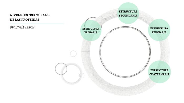 Niveles Estructurales De Las Proteínas By Alvaro Alfacas On