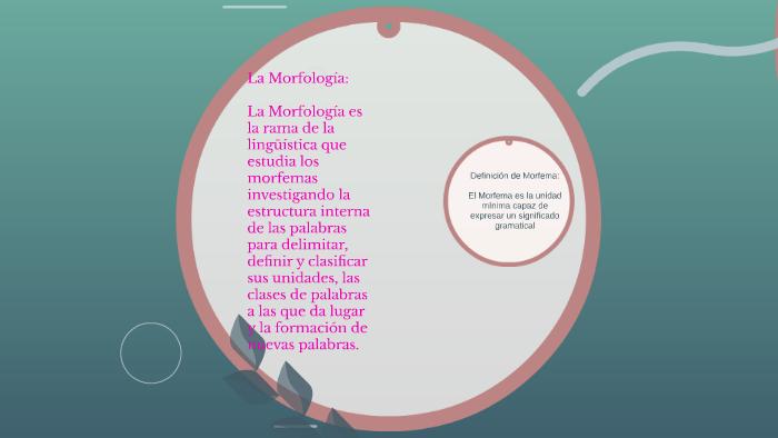 La Morfología By Yonoris Enith Valencia Valencia On Prezi