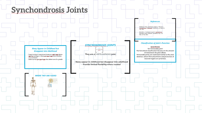 Synchondrosis Joints By Paige Aquino Anteroinferiorly it articulates with the vomer. prezi