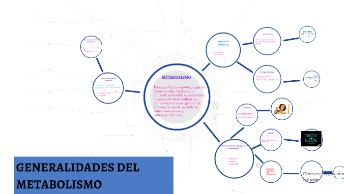 Generalidades del metabolismo by Domenika Amaya