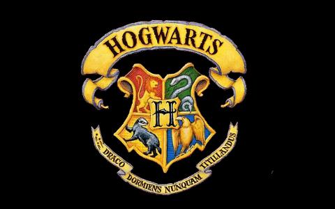 Harry Potter And The Houses Of Hogwarts By Sahil Tiku