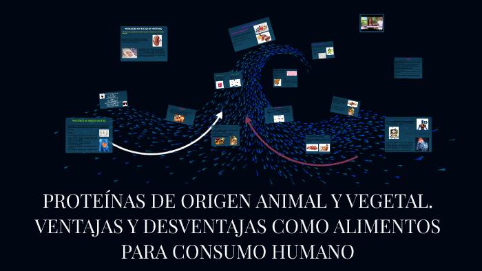 beneficios+y+perjuicios+de+consumir+proteinas+de+origen+animal