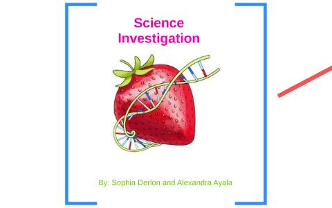 Science Investigation By Sophia Derlon