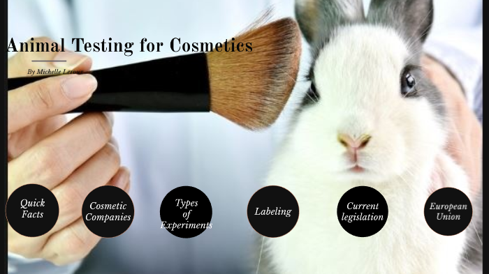 Animal Testing For Cosmetics By