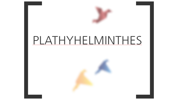 PLATYHELMITHES by diah dita on Prezi