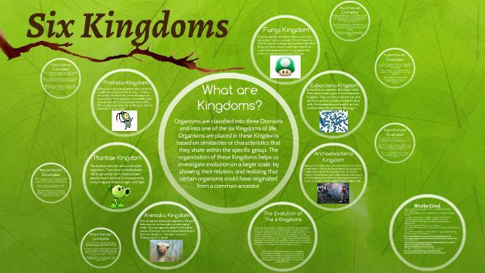 Six Kingdoms - Biology by Bruno Bak