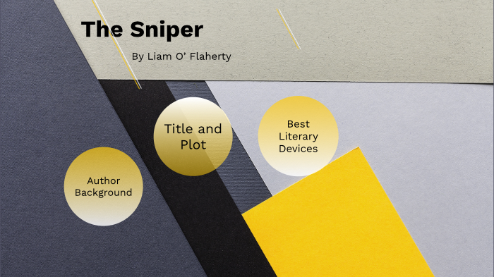 literary devices in the sniper
