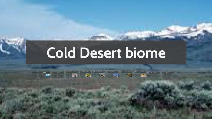 Cold Desert Biome By Lauren Clifton On Prezi