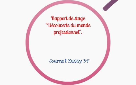 Rapport De Stage Conseillere Vendeuse En Pret A Porter Feminin Haute