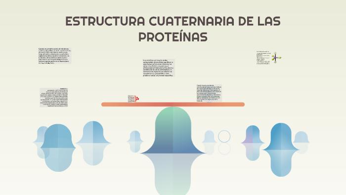 Estructura Cuaternaria De Las Proteínas By Raquel