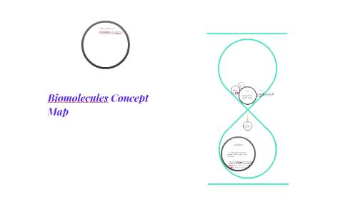 Biomolecules Concept Map By Leilani Lebert On Prezi