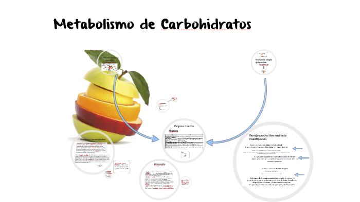 Metabolismo de Carbohidratos by Carolina Amaya Rivera
