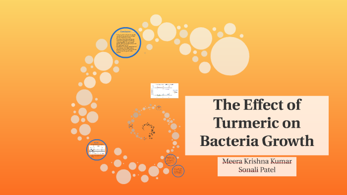 The effect of Turmeric on Bacteria Growth by Meera Kumar on
