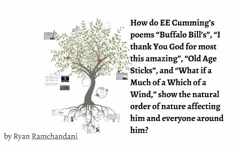 ee cummings buffalo bill analysis