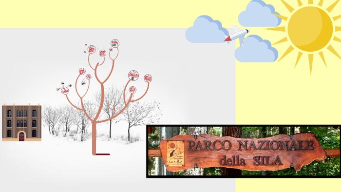 Parco Nazionale Della Sila By Francesca Fasoli On Prezi