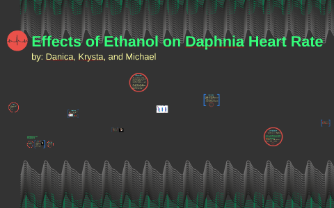 effect of alcohol on daphnia heart rate