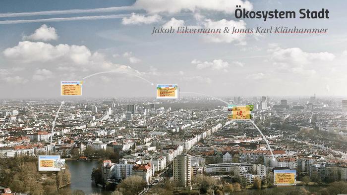 Okosystem Stadt By Cj Klanhammer On Prezi