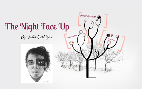 the night face up by julio cortazar questions and answers