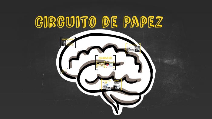 Circuito De Papez : Circuito papez by fernanda padilla on prezi