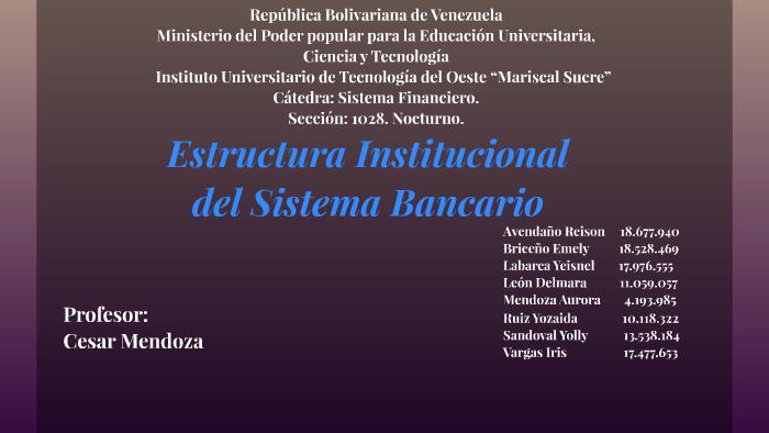 Estructura Institucional Del Sistema Bancario By Reison