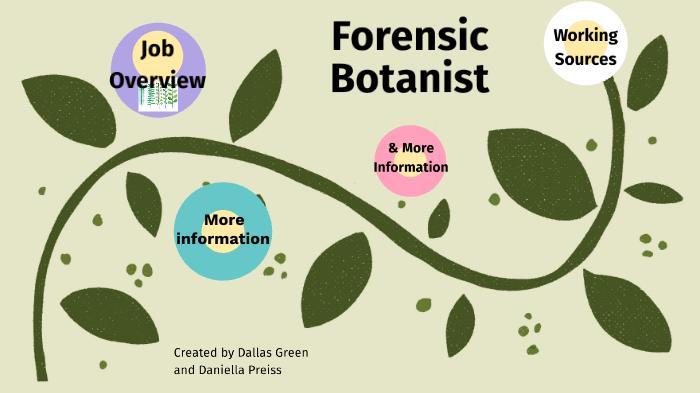 Forensic Botanist By Dallas Green On Prezi Next