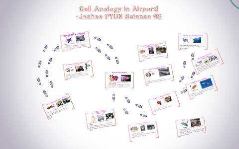 Cell Analogy In Airport By Jaehee Pyun On Prezi
