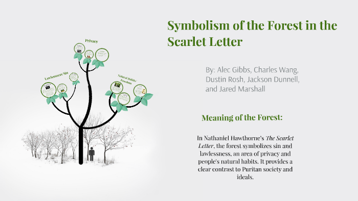 the forest in the scarlet letter